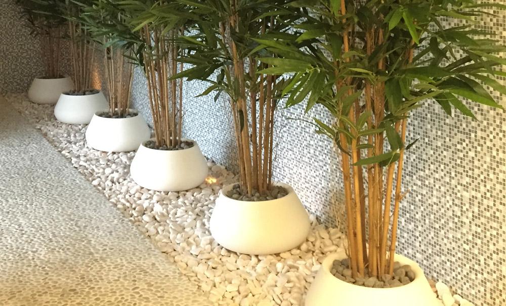 Constru o de jardins sograma jardins - Tipos de plantas de exterior ...